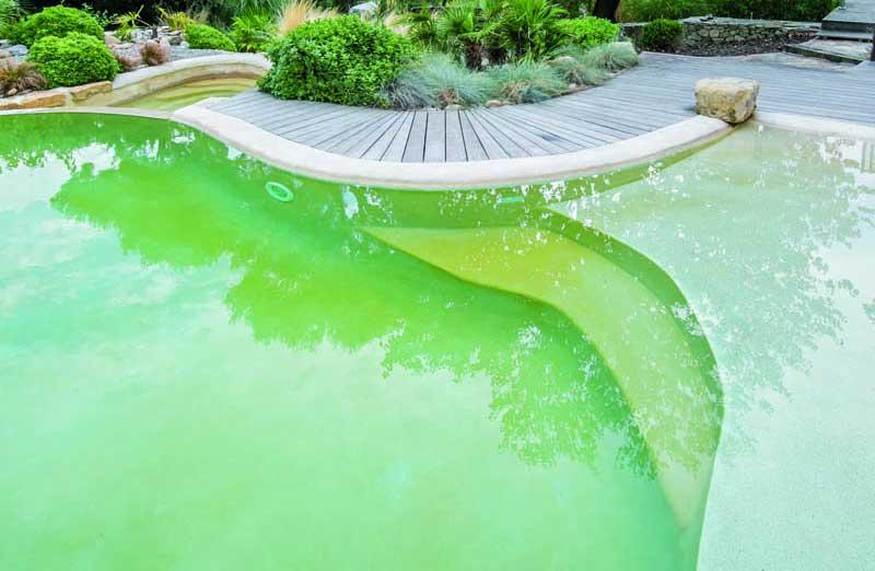 Comment remédier à un problème d'eau verte dans une piscine ?