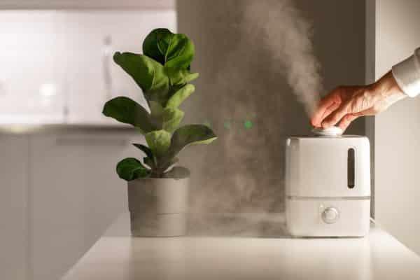 guide comparatif humidificateur d'air