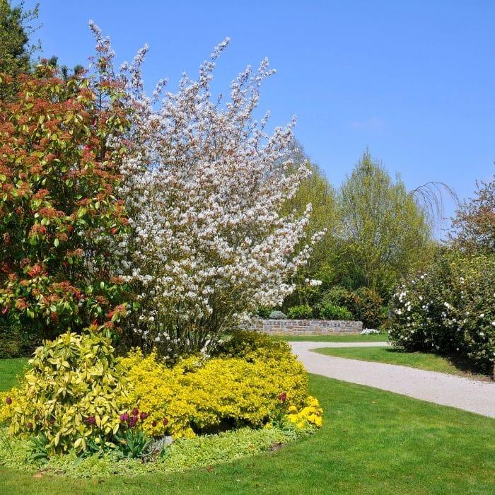 jardin calvados
