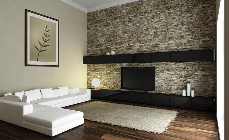 murs en pierres living room