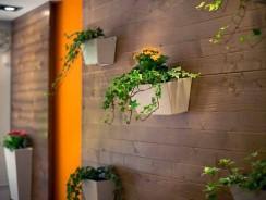 Décoration murale : 6 idées simples pour embellir vos murs