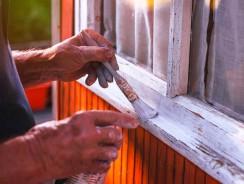 Tout savoir sur la peinture pour bois